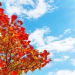 秋晴の候 時候の挨拶 読み方 意味 例文