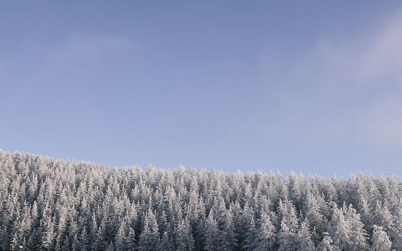 寒冷の候 時候の挨拶 読み方 意味 例文