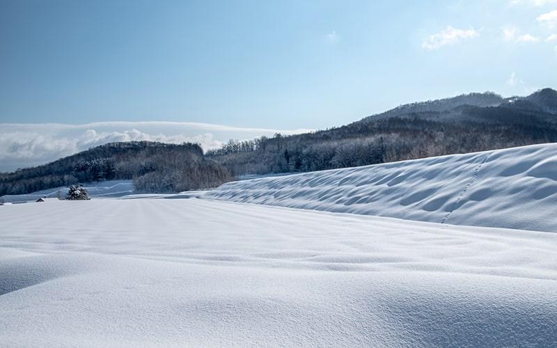 新雪の候 時候の挨拶 読み方 意味 例文
