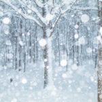 大雪の候 時候の挨拶 読み方 意味 例文
