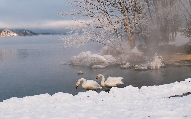 酷寒の候 時候の挨拶 読み方 意味 例文