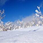 残冬の侯 時候の挨拶 読み方 意味 例文